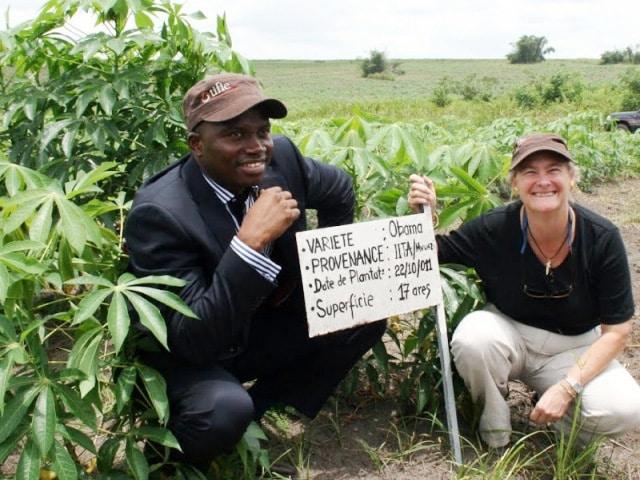 Promoting manioc in Congo: FAO investing 160 million FCFA - Africa