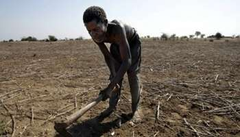 Summit on climate change: Africa should take actions