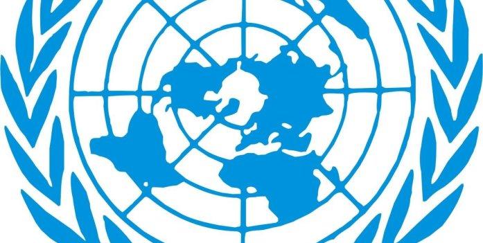 OMD: l'ONU félicite l'Afrique