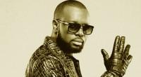 Deuxième artiste français le mieux payés en 2014, la star congolaise Maître Gims a émis le vœu de travailler avec son challenger (troisième du classement), Johnny Hallyday. L'ancien membre de […]