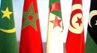 (Agence Ecofin) – La Banque maghrébine d'investissement et de commerce extérieur (BMICE) a été officiellement lancée lors d'une assemblée générale constitutive tenue le 21 décembre à Tunis. La nouvelle institution, […]