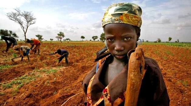 Sénégal: la solution de Caritas Dakar contre la pauvreté et l'immigration clandestine