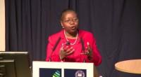 (Agence Ecofin) – L'ancienne directrice de la Société financière internationale succèdera au Dr Simon Young comme nouvelle directrice exécutive à partir du 7 septembre 2016. Économiste et conseillère d'origine zambienne, […]