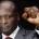 La nouvelle configuration du nouvel Exécutif gabonais a été dévoilée dimanche dernier, soit quatre jours après l'investiture d'Ali Bongo pour un second septennat à la tête du Gabon. L'équipe gouvernementale […]