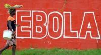 (Africanews)- L'Organisation mondiale de la Santé reconnaît l'efficacité d'un vaccin contre Ebola. Il n'y a eu aucune contamination parmi les quelque 6.000 personnes qui ont reçu ce vaccin l'an dernier […]