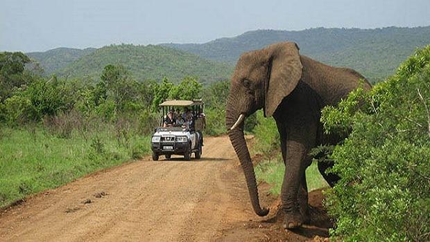 Tourisme la tanzanie en qu te de nouveaux march s africa top success - Office du tourisme du bresil ...