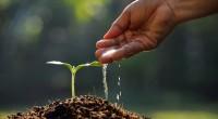 L'agriculture est l'un des piliers économiques du Rwanda. Elle occupe près de 90% de la population et représente 33, 14% de son PIB, selon les données de la Banque mondiale. […]