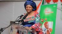 Le ministre ivoirien du Commerce, de l'artisanat et de la promotion des PME, Souleymane Diarrassouba, a procédé à l'ouverture officielle de la 3e édition de la Foire internationale d'Abidjan (FIA), […]