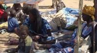 Des milliers de réfugiés nigérians ont été expulsés par les autorités camerounaises en dépit de l'accord entre les autorités d'Abuja et Yaoundé pour éviter ce genre de reconduites à la […]