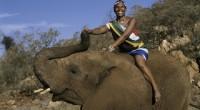 L'Afrique du Sud occupe la première position à l'échelle africaine dans le classement mondial de la compétitivité touristique publié le 6 avril par le Forum économique mondial (WEF). La nation […]