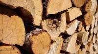 Depuis 2013, l'Europe a interdit l'entrée sur son marché du bois non certifié FLET. Cet acronyme anglais signifie Application des réglementations forestières, gouvernance et échanges commerciaux. Le Gabon, qui est […]