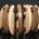 Les poignets des hommes s'ornent de plus en plus de bracelets divers et variés La tendance a été inaugurée par les jeunes branchés des lycées et collèges, avant de toucher […]