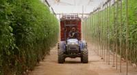 Le gouvernement sénégalais vient de procéder au lancement d'un projet de développement de l'entrepreneuriat agricole. Initié par le Programme des domaines agricoles communautaires (PRODAC) avec l'appui financier de la Banque […]