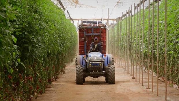 entrepreneuriat agricole des jeunes Africa Top Success