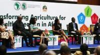La Banque africaine de développement (BAD) vient de primer trois jeunes entrepreneurs africains en marge de sa 52e assemblée annuelle d'Ahmedabad en Inde. Il s»agit du Ghanéen Ababio Kwame, de […]