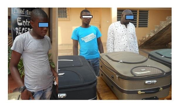 Lutte contre la criminalité faunique: Trois trafiquants de peaux de pythons royaux arrêtés à Lomé