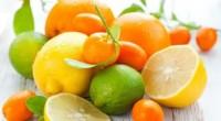 Vendredi dernier à Abidjan, s'est tenu un séminaire sur l'exportation de fruits et légumes du Maroc vers l'Afrique, plus particulièrement l'Afrique de l'Ouest, rapporte Fraternité Matin. Pour mémoire, le 24 […]