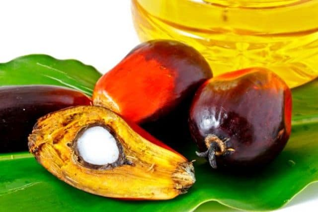 huile de palm