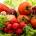 L'information vient de tomber, le Nigéria a commencé à exporterdes légumes vers la Grande-Bretagne. « Nous avons entamé l'exportation de légumes. Initialement, ceci se faisait d'une manière désorganisé», a déclaré […]