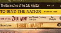 Question récurrente : où en est la littérature en langues africaines ? Cela fait un siècle que des auteurs, au sein de la nation arc-en-ciel, s'expriment dans leur langue maternelle. […]