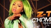 Des cheveux verts, une dégaine de gamine et un nom peu commun. Voilà comment s'identifie la jeune artiste camerounaise du moment « Z-Tra ». Il a suffi d'une campagne publicitaire […]