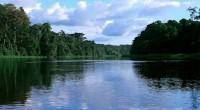 Les autorités camerounaises viennent de lancer un projet de développement de l'énergie électrique à partir du fleuve Nyong. Ce projet d'une capacité de 250 MW d'électricité s'inscrit dans le cadre […]