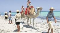 1 527 891 c'est le nombre de touristes arrivés en Tunisie entre janvier et mai 2017. Une évolution de 46,2 % par rapport à la même période l'année dernière en […]
