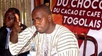 La coopérative Chocotogo — seul producteur du Chocolat au Togo — et le gouvernement togolais à travers le Conseil interprofessionnel du café – cacao, organisent la deuxième édition de la […]