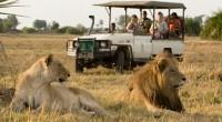 Selon l'édition 2017 du rapport d'évaluation annuel du conseil mondial du tourisme et du voyage (WTTC), l'apport de l'industrie du tourisme au PIB du Kenya devrait croître en moyenne de […]