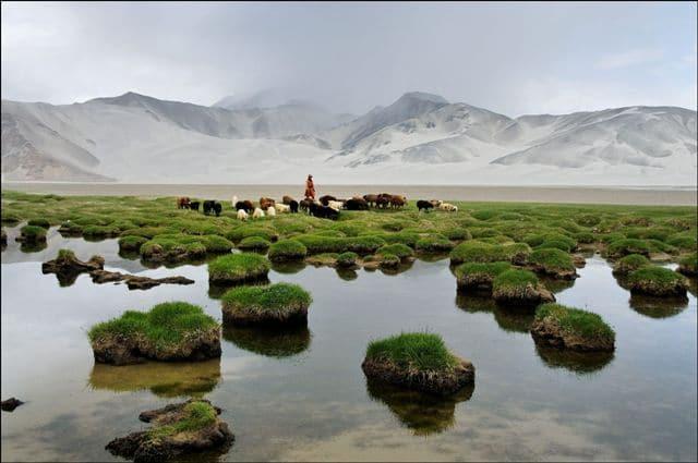 Jamila, une jeune bergère kirghize mène son troupeau au bord du lac Bulong dans les montagnes du Pamir. Au second plan, les montagnes de sable (Kumtagh).