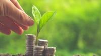 On ne le dira jamais assez. L'accès au financement demeure le principal obstacle des start-up africaines. Ailleurs comme au Burkina, les autorités tentent de trouver une solution à ce problème […]