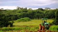 L'Organisation des Nations unies pour l'alimentation et l'agriculture (FAO), a organisé un atelier sur le marché des innovations agricoles ou ''marketplace'', ce jeudi 6 juillet à Ouagadougou. L'atelier s'installe […]