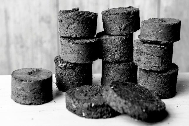 charbon bio