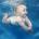 Dans le souci de renforcer les aptitudes physiques des nourrissons et de leurs inculquer dès le bas âge le goût de l'effort tant physique que mental, un centre situe au […]