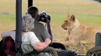 L'Organisation mondiale du tourisme vient de dévoiler son rapport surles recettes touristiques en Afrique pour le compte de l'année2016. Elles sont estimées à plus de 35 milliards$, soit une hausse […]