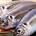 Le poisson frais, cette touche particulière de la cuisine sénégalaise quoique prisée, se heurte à certaines difficultés. Des difficultés tant au niveau des acheteurs que celui des vendeurs. Pour pallier […]