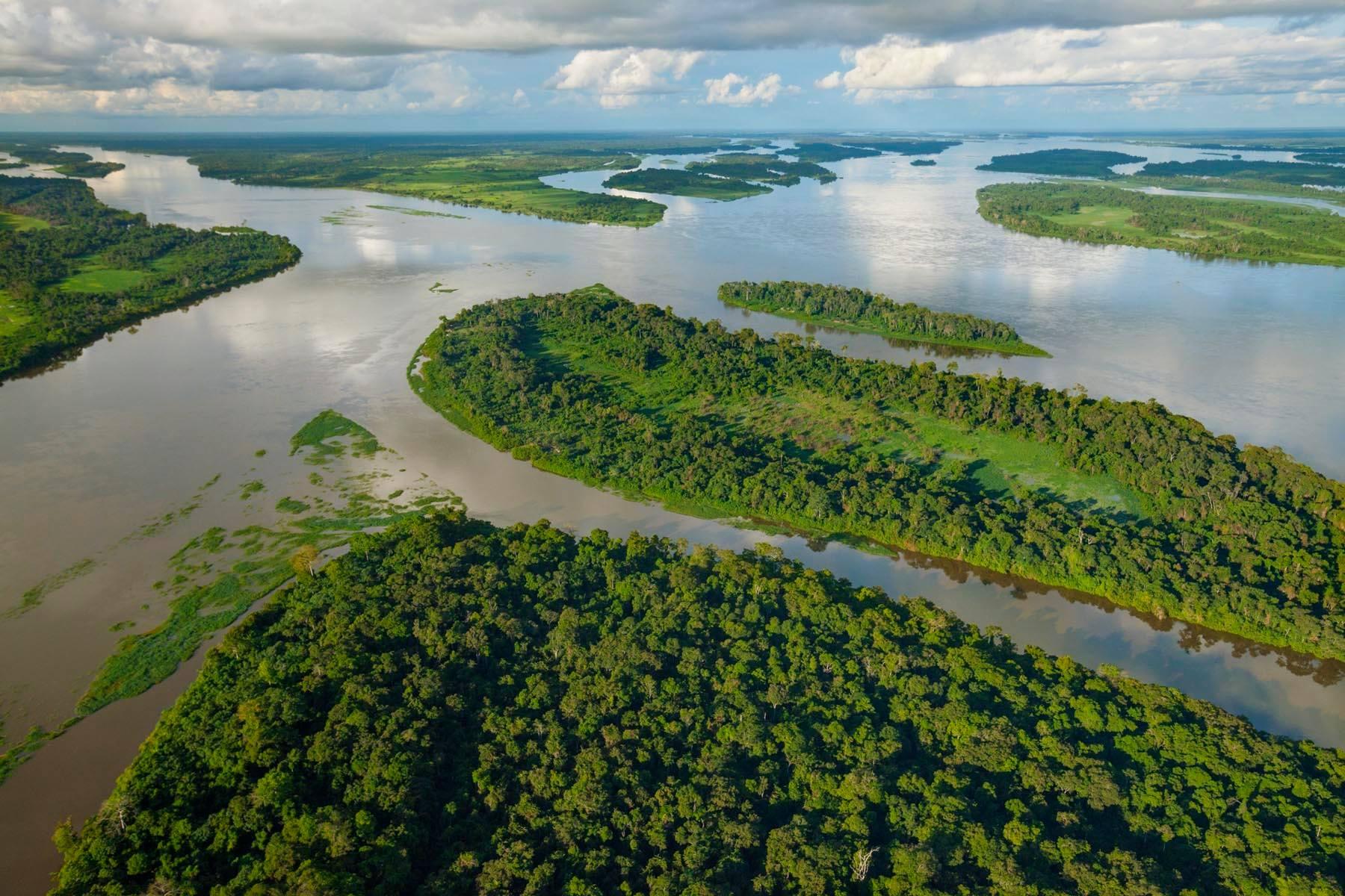 RDC : le parc Salonga, l'une des  merveilles de l'Afrique