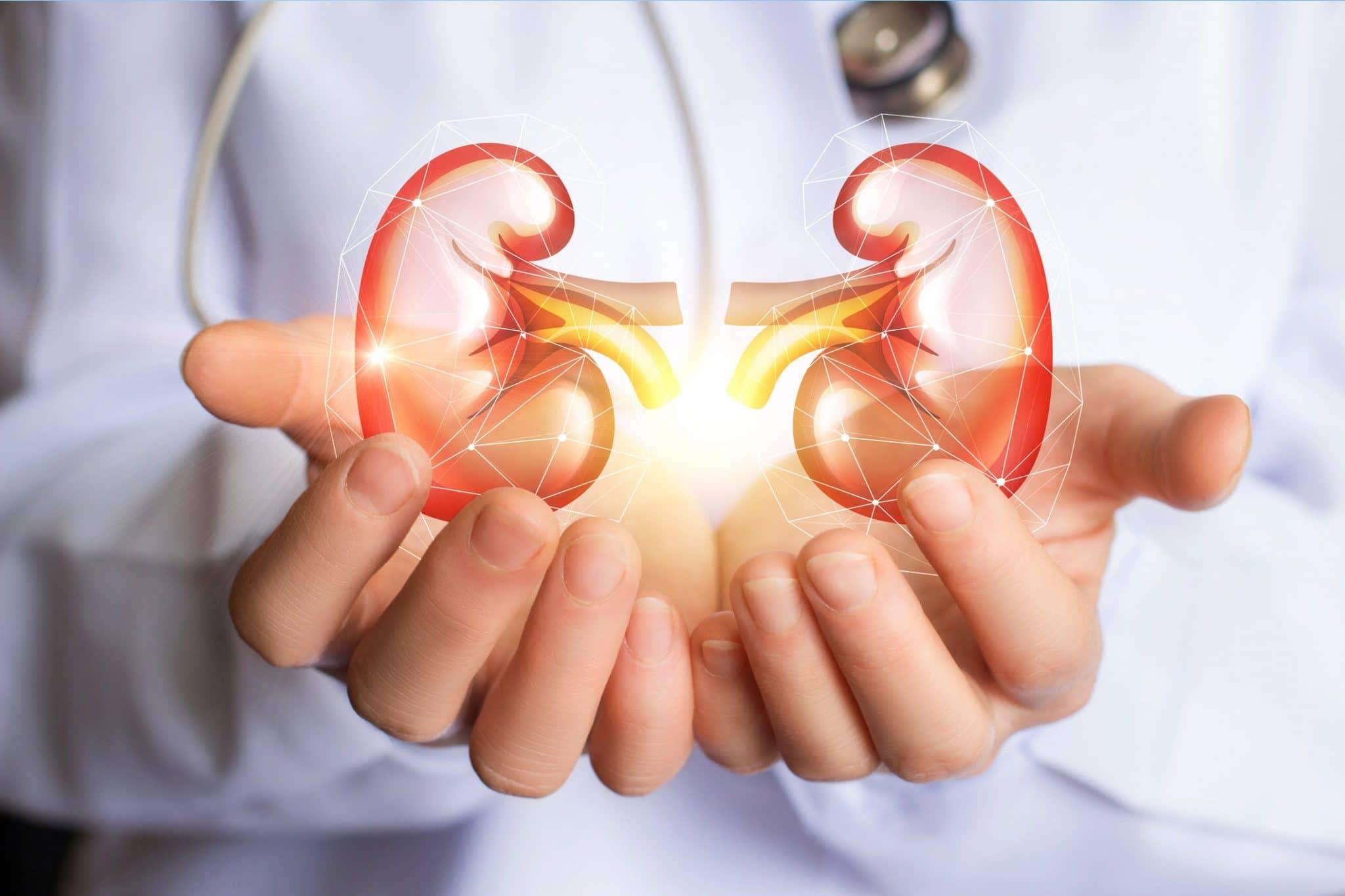 Insuficiencia renal: ¡el diagnóstico temprano puede salvar una vida!  - África Top Success