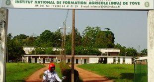 Togo : à la découverte de l'Institut National de Formation Agricole de Tové