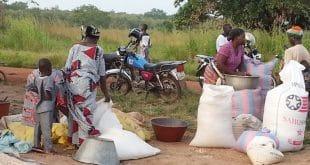Togo : quelques facteurs qui distinguent le paysan de Vogan des autres