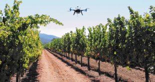 Togo : digitalisation agricole, des pistes en exploration