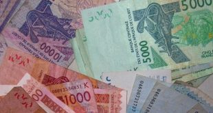 Du franc CFA à l'éco : La difficile marche vers la souveraineté monétaire