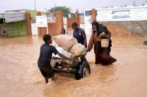 pluies diluviennes