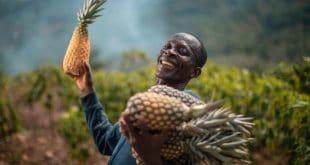 Ghana : AgroCenta, la startup qui sauve près de 50 000 agriculteurs