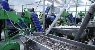 Côte d'Ivoire : les nouvelles ambitions dans la transformation du cajou
